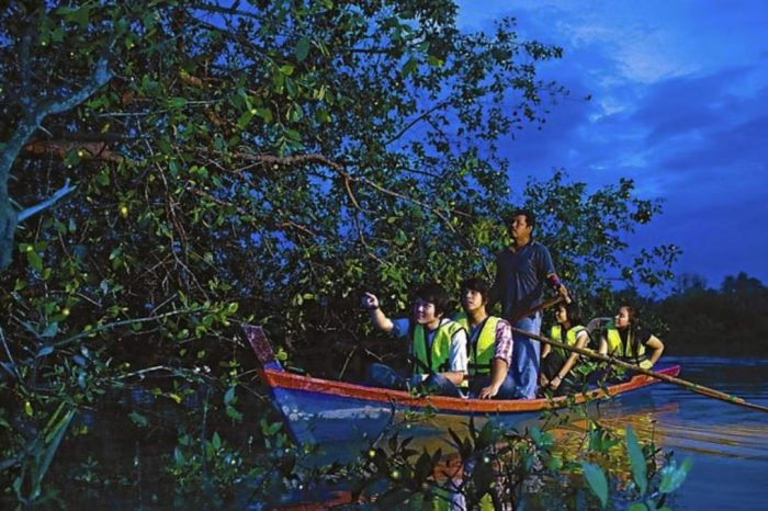 Tour Độc Đáo: Ngắm Đom Đóm Đêm Tại Selangor & Những Trải Nghiệm Đặc Biệt Tại Kuala Lumpur 4 ngày 3 đêm