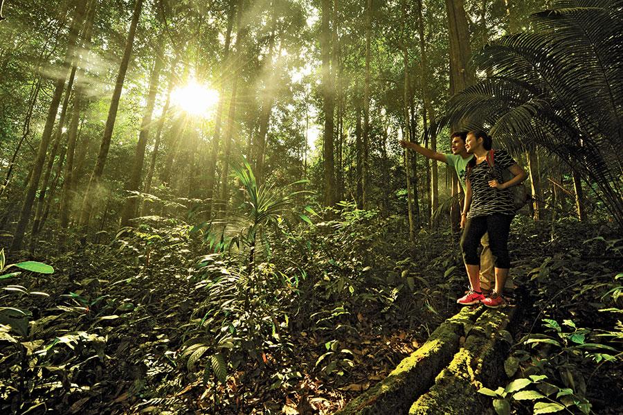 Du Lịch Thám Hiểm Kết Hợp Tổ Chức Teambuilding Tại Malaysia