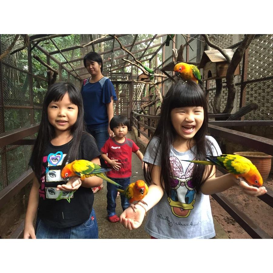 tour-malaysia-le-2-9-tour-3-ngay-2-dem-cao-cap-trai-nghiem-dac-biet-tai-kuala-lumpur (11)
