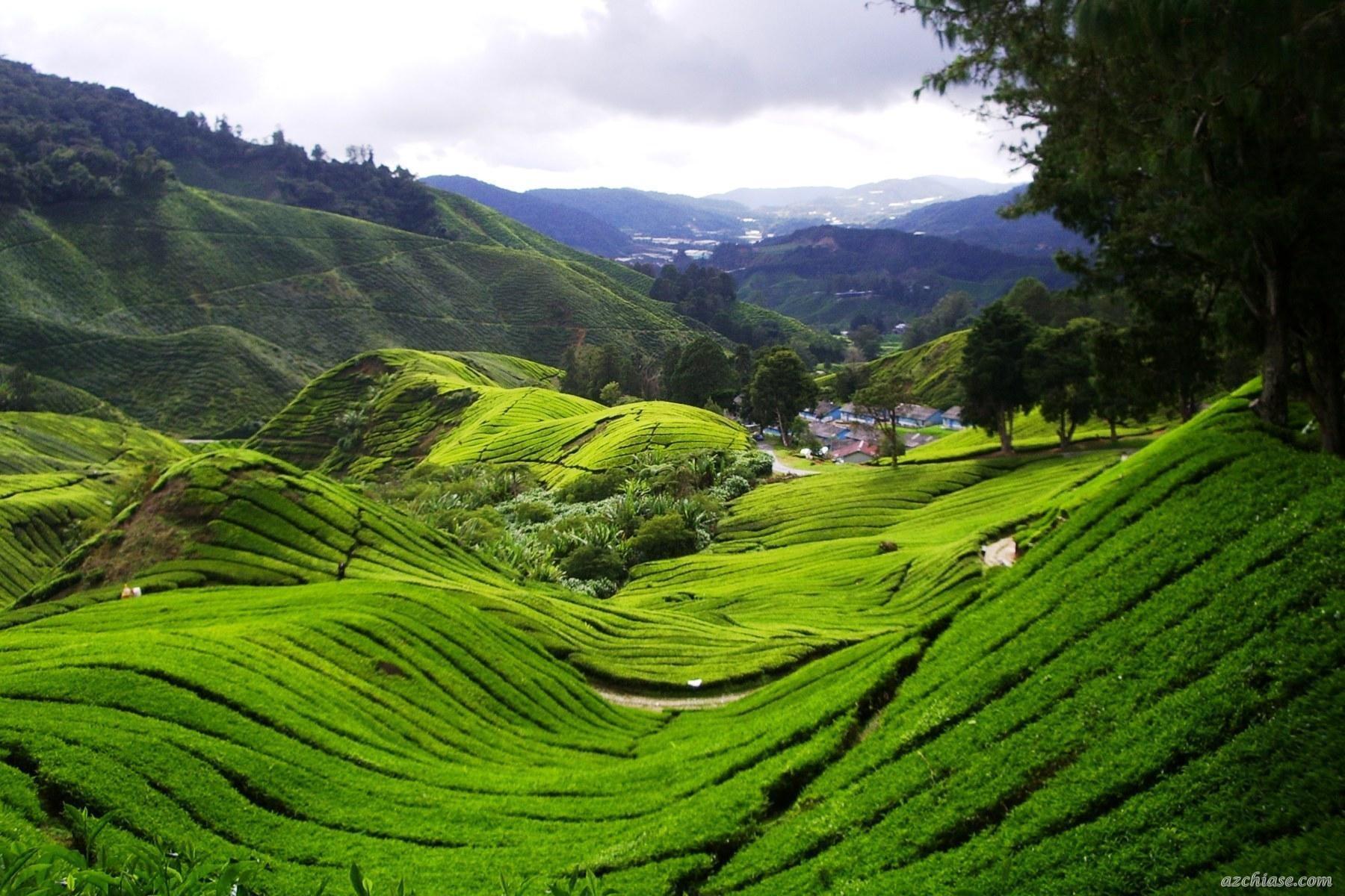 Du lịch Malaysia nên đi mấy ngày