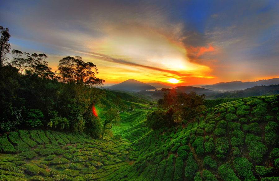 Du Lịch Malaysia Mùa Nào Đẹp?